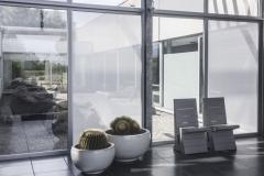 MHZ-SQUID-Fensterfront